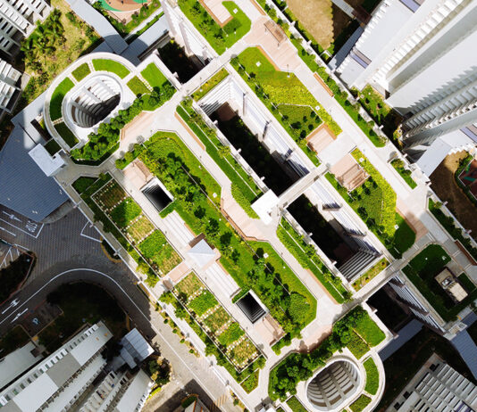 Green Roofs On Buildings