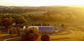 How do Community Solar Farms Work?