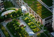 Living Concrete, The Future of Sustainable Construction?